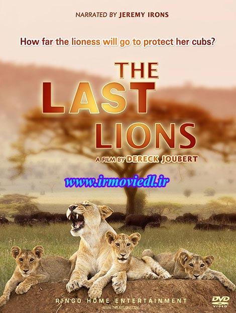 دانلود مستند آخرین شیرها با دوبله فارسی The Last Lions 2011