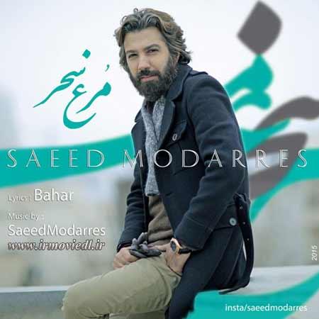 آهنگ سعید مدرس مرغ سحر
