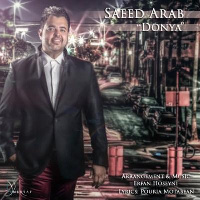 دانلود آهنگ جدید سعید عرب دنیا