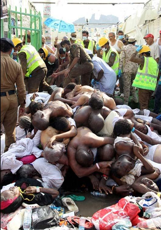 اخبار و اطلاعات و فیلم حادثه کشته شدن زائرین در منا